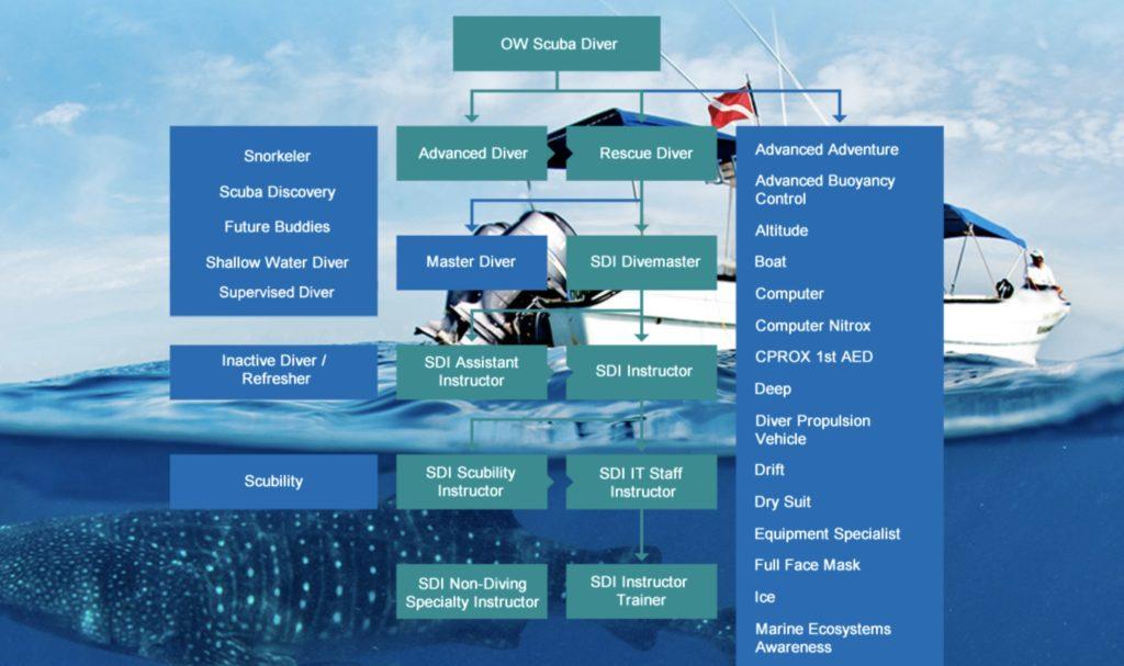 SDIのコースマップ